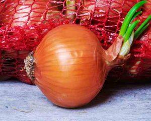 mesh-onion-bag
